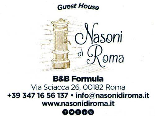 i nasoni di roma…… B&B Via Sciacca 26, 00182 Roma