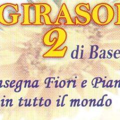 IL GIRASOLE 2-fiori e Piante nel mondo-Piazza dei tribuni,5-Tuscolana Roma